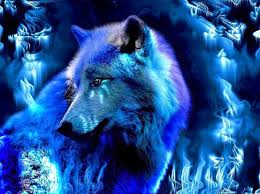 fantasy ice wolf wallpapers wolf
