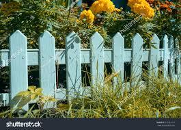 Decorative White Picket Fence Walling Autumn Stock Photo Edit Now 717581917