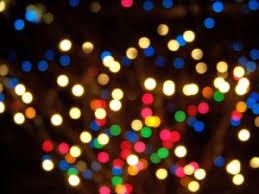 hopeland gardens lights