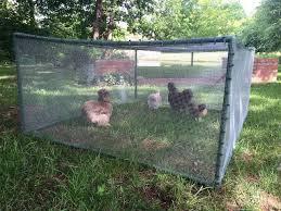 Diy Cheap And Easy Portable Chicken Rabbit Run Coop Gardening For You Chicken Enclosure Rabbit Run Chicken Fence