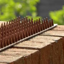 Fence Guard Security Spikes Save At Hsd Retail