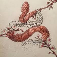 Pin by Iva Hamilton on Tattoos (FO SHO) | Snake art, Skeleton drawings,  Drawings