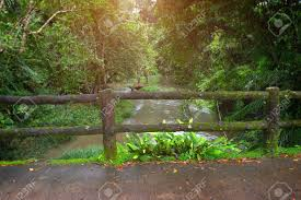 Concrete Fence Post Bridge With Moss In The Nature Of National Stock Photo Picture And Royalty Free Image Image 108035573