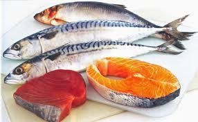 fish salmon tuna