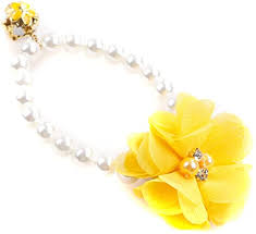 Amazon.com : SONGLIN Yellow Dog Collar Necklace Faux Pearl Bell Flower  Pendant Decor : Pet Supplies