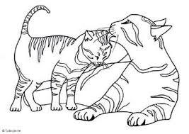 Katten Kleurplaten Kleurplaten Voor Volwassenen Kleurplaten