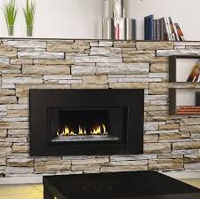 gas fireplace insert by napoleon find