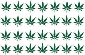 28 Small Sativa Marijuana Vinyl Decals 1 In X 1 In Each Crown Decals