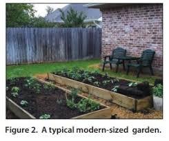 10 Steps To Vegetable Garden Success How Do I Maintain My Garden