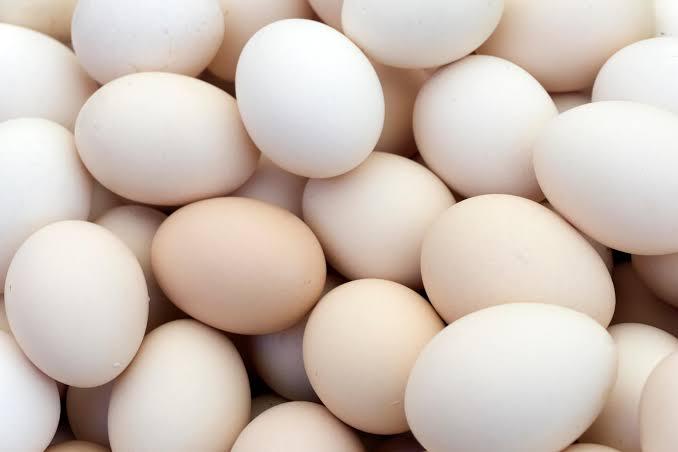 "Image result for egg"""
