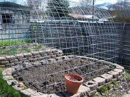 Pin By Linda Gingrich On Gardens And Plants Garden Beds Garden Fencing Deer Proof