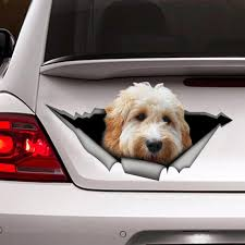 White Goldendoodle Car Decal 3d Sticker Pet Decal Dog Etsy