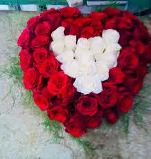 ورد بيت الزهور قلب احمر ابيض عدد ٥٠ ورده Facebook