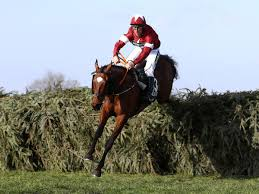 Virtual Grand National 2020: What is it ...
