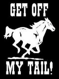 Pin By Kristin Willis On Cowgirl Bumper Stickers Car Decals Vinyl Horse Trailer Horses