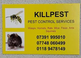 Killpest Pest Control Services - 2 Photos - Pest Control Service - Brooklyn  Drive, Reading, RG4 8, United Kingdom, RG4 8 Reading, UK