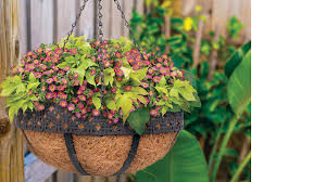 Whites Group Hanging Baskets Accessories