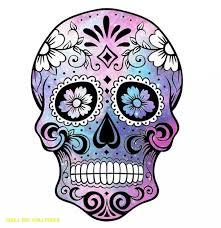 sugar skull art sugar skulls