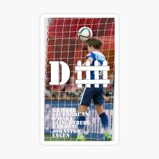 D Fence Iphone Case Cover By Uswnt Fan Redbubble