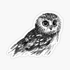 Owls Stickers Redbubble