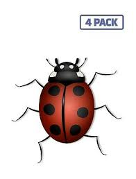 Ladybug Lady Bug Design Insect Bug Colorful Sticker Vinyl Decal 1 1265 Ebay
