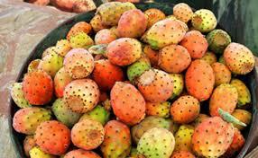 火龙果是仙人掌的果实吗仙人掌果和火龙果的区别_生活保健_风度男人网