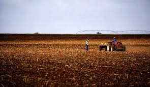 Image result for Institute for Poverty, Land and Agrarian Studies Research Areas