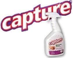capture carpet cleaning powder sprays