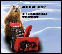 Image result for groundhog laughing about the weather