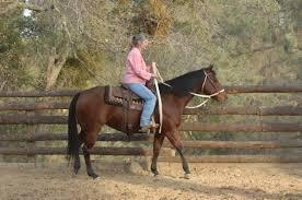 tips for senior horseback riders