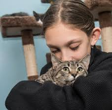 Making new friends at Pets4Luv adoption event | Herald Community ...