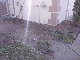 """Yard Beautification by Aaron """"catfish"""" Albritton - Home 