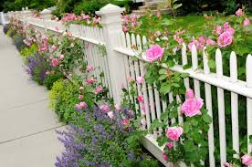 Best White Picket Fence Ideas Designs Pictures In 2020 Own The Yard
