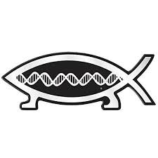 Dna Fish Darwin Magnetic Car Emblem 5 5