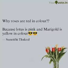 best marigold quotes status shayari poetry thoughts yourquote