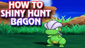 Shiny Hunting Bagon in Pokemon Sun and Moon - YouTube