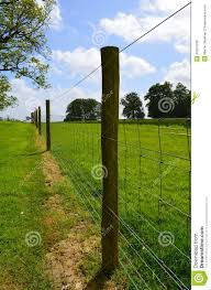 Wire Fence Running Along Pasture Field Stock Photo Image Of Sussex Straight 40551230