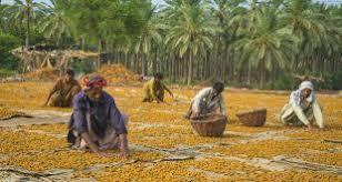 pakistan dates – CPECBULLETIN