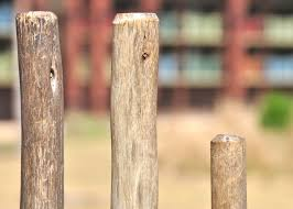 Page 9 Of Wood Fence Post Pictures Curated Photography On Eyeem