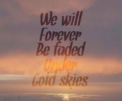 gold skies martin garrix instagram quotes captions martin