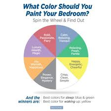 what color should you paint your