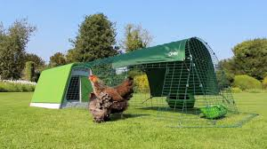Eglu Go Instructions How To Build An Omlet Eglu Go Chicken Coop Omlet Pet Products Youtube