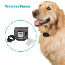 Premier Pet Wireless Fence With Up To 1 2 Acre Circular Boundary Sam S Club