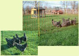 Fast Fence Fine Mesh Electric Nets