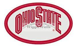 Amazon Com 4 Inch Oval Logo Gray Red Osu Ohio State University Buckeyes Removable Wall Decal Sticker Art Ncaa Home Decor 2 1 2 Inch Baby