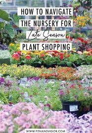 nursery for late season plant