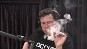 thoughts on elon musk and joe rogan interview pod cast steemit