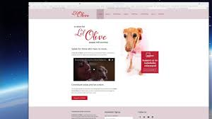 Videos - A Voice for Lil Olive
