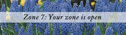 best plants for zone 7 at