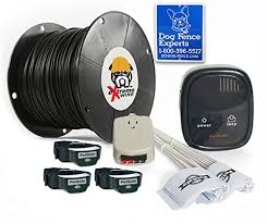 Petsafe Rechargeable In Ground Dog Fence 1000 Feet Of 14 Gauge Upgraded Extreme Wire 3dog Sullivanxlibbymir